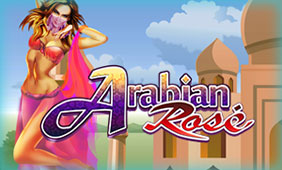 Arabian-Rose
